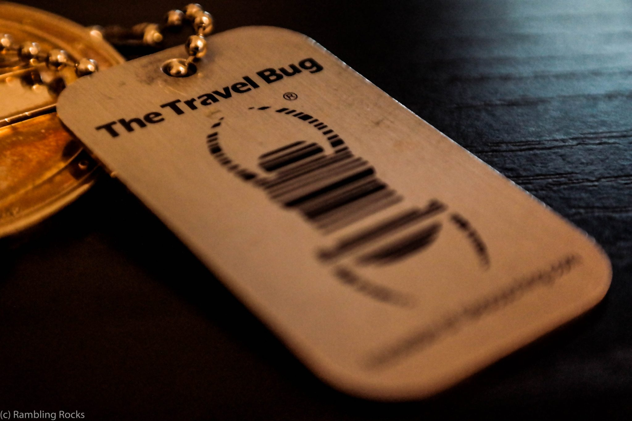 Geocaching Travelbug