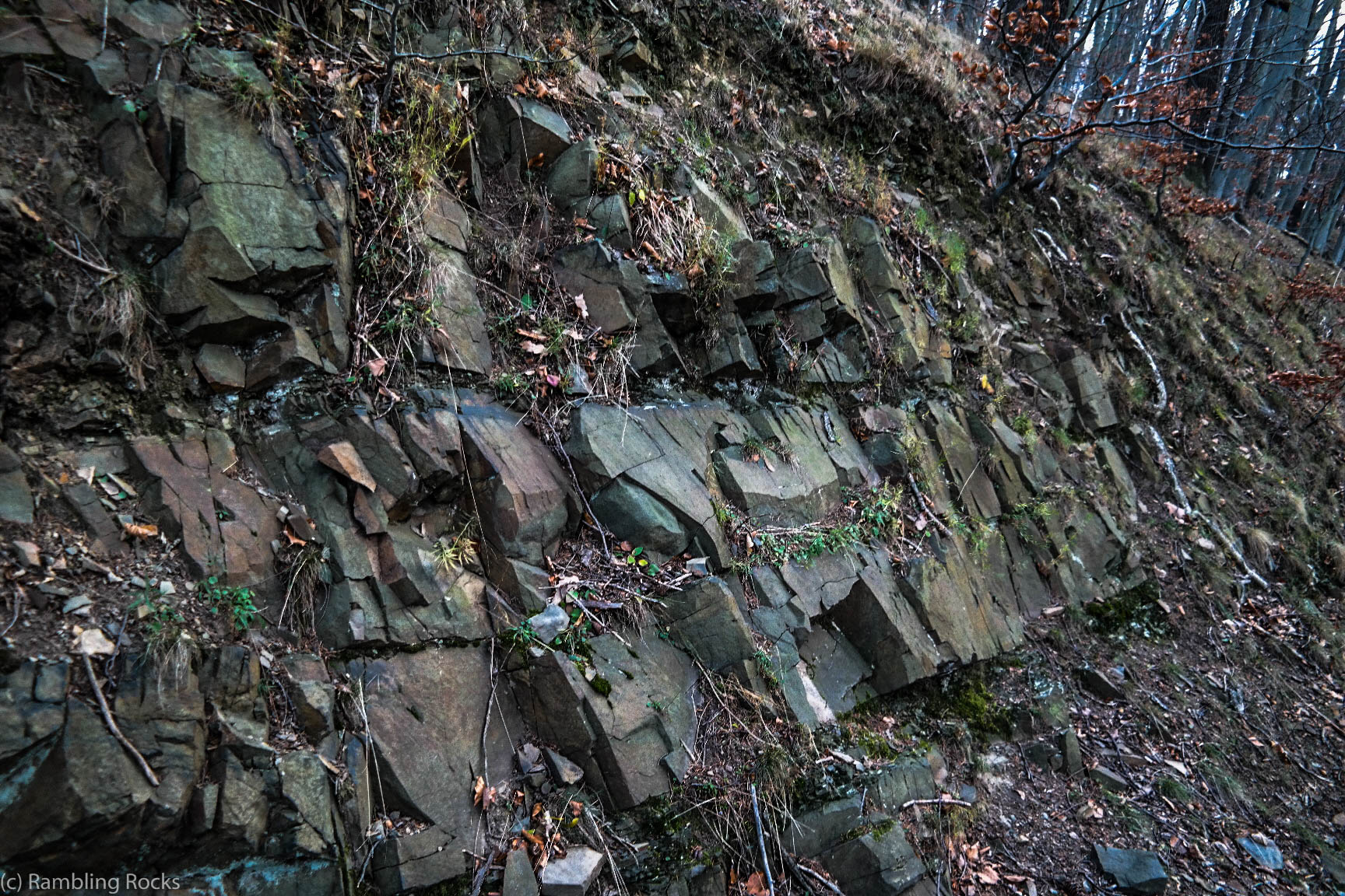 Grauwacke am Agnesberg