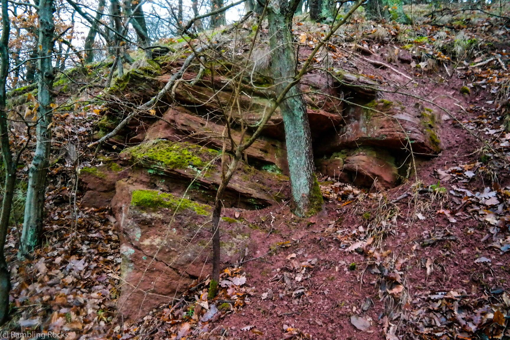 Sandstein und Konglomerat