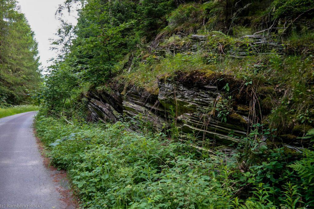 Schiefer im Harz