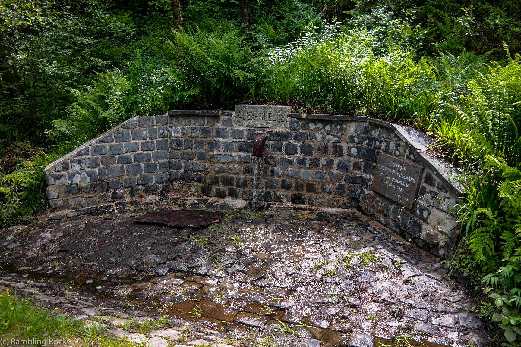 Alex-Quelle im Harz